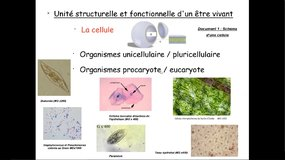 Mise à niveau Biologie - 1_Introduction