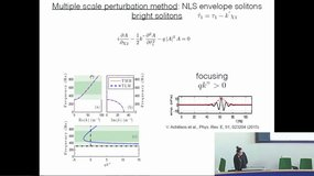 Nonlinear Membrane-Type Acoustic Metamaterials: Harmonic generation and solitons, by Jiangyi Zhang (Laboratoire d'Acoustique de l'Université du Maine, UMR 6613 CNRS)