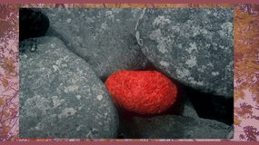 Andy Goldsworthy, showing nature's colours